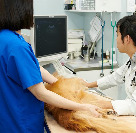 特色のある診療科
